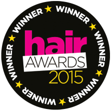 Beauty Works Best Hair Extensions (Synthetic Hair) – Winner - 2015
